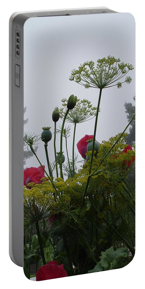Nature Portable Battery Charger featuring the photograph Early Morning Garden Walk by Noa Mohlabane