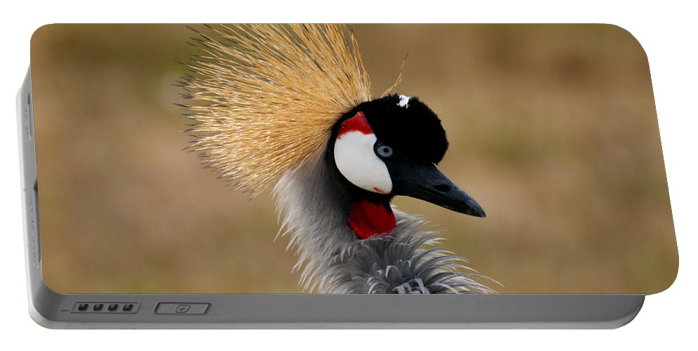 East African Crowned Crane Portable Battery Charger featuring the photograph East African Crowned Crane by Tracy Winter