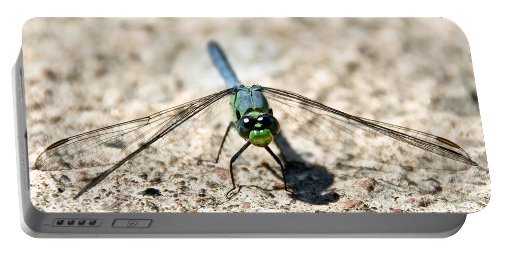 Dragonfly Portable Battery Charger featuring the photograph Eastern Pondhawk Front by Cheryl Baxter