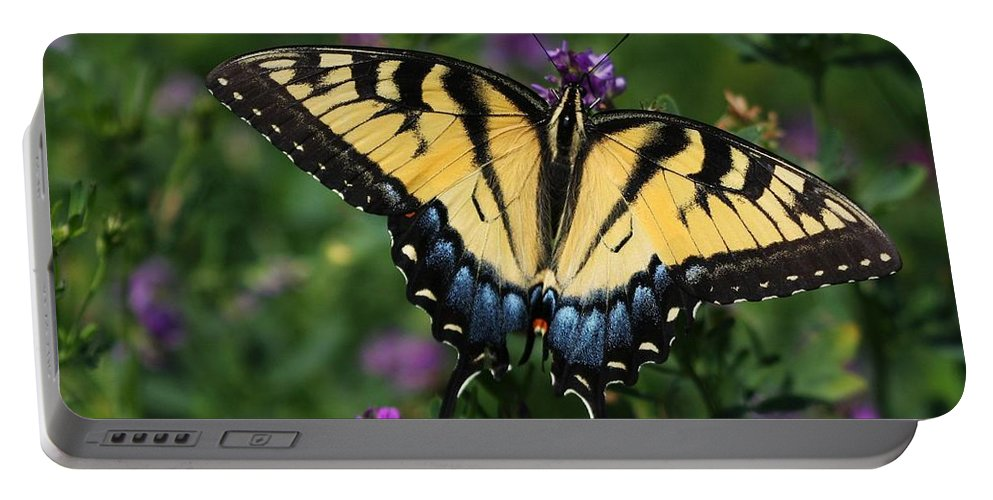 Butterfly Portable Battery Charger featuring the photograph Eastern Tiger Swallowtail by Jayne Gulbrand