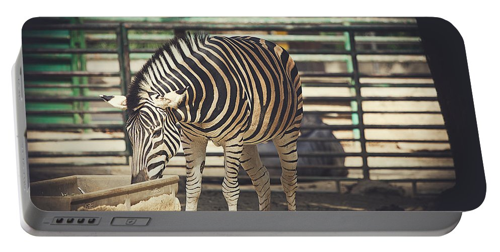 Mammal Portable Battery Charger featuring the photograph Eating Zebra by Pati Photography