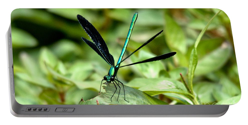 Ebony Jewelwing Portable Battery Charger featuring the photograph Ebony Jewelwing by Cheryl Baxter