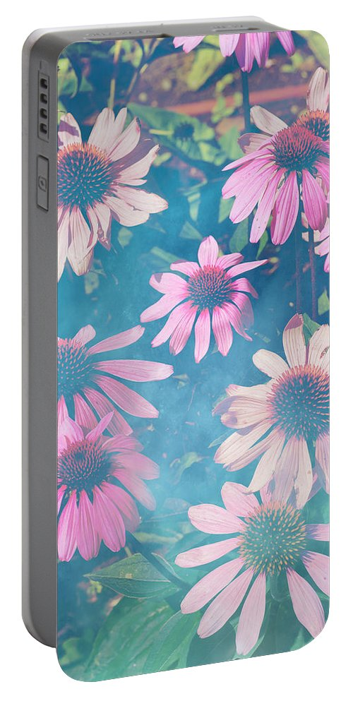 Blue Portable Battery Charger featuring the photograph Echinacea Flowers by Pati Photography