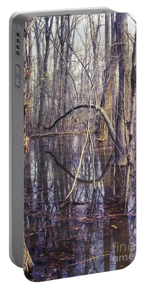 Big Oak Tree State Park Missouri Trees Landscape Landscapes Parks Trunk Reflection Reflections Water Waterscape Waterscapes Underwater Forest Forests Portable Battery Charger featuring the photograph Eerie by Bob Phillips