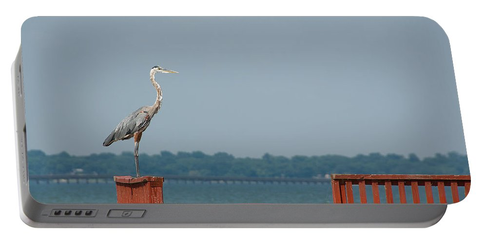 Egret Portable Battery Charger featuring the photograph Egret by Charles Beeler
