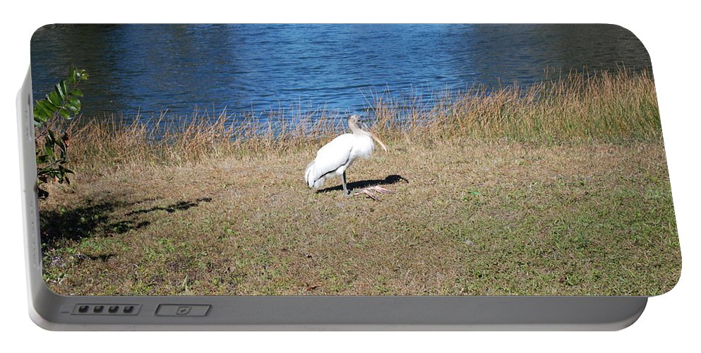 Tired Feet Portable Battery Charger featuring the photograph Egret by Robert Floyd