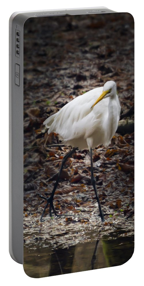 Egret Portable Battery Charger featuring the photograph Egret Strut by Belinda Greb