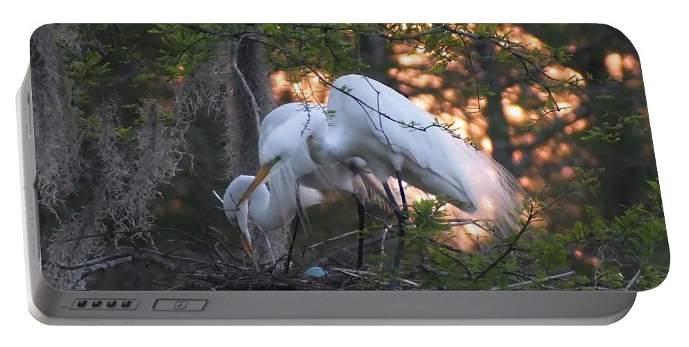 Rookery Portable Battery Charger featuring the photograph Egrets At Nest by Lizi Beard-Ward