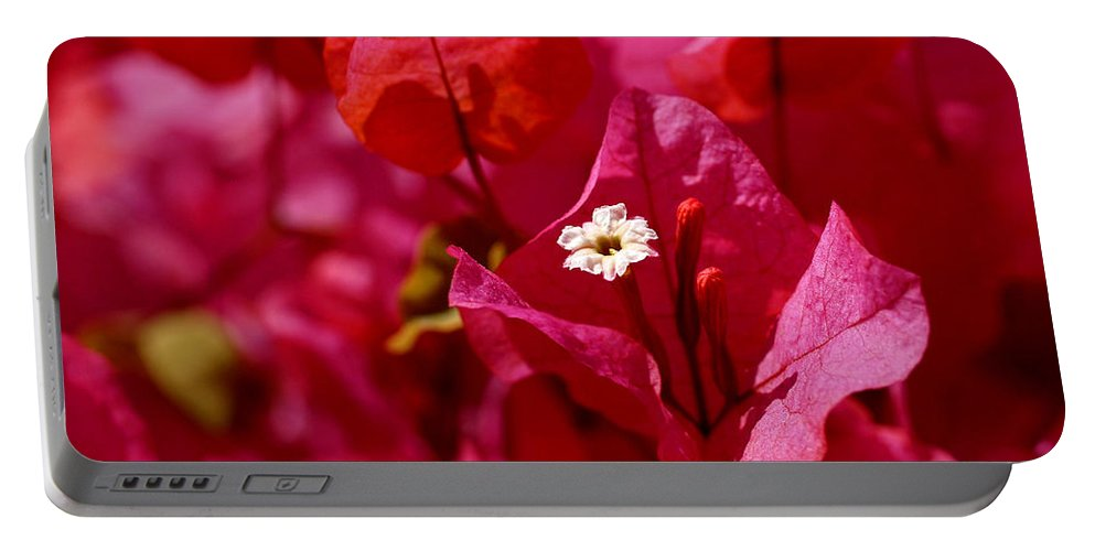 Bougainvillea Portable Battery Charger featuring the photograph Electric Pink Bougainvillea by Rona Black