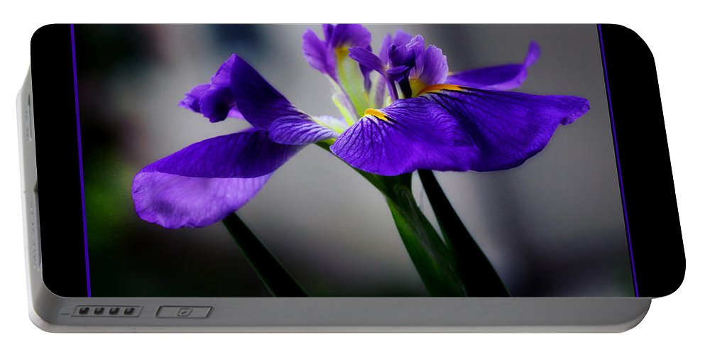Iris Portable Battery Charger featuring the photograph Elegant Iris With Black Border by Lucy VanSwearingen