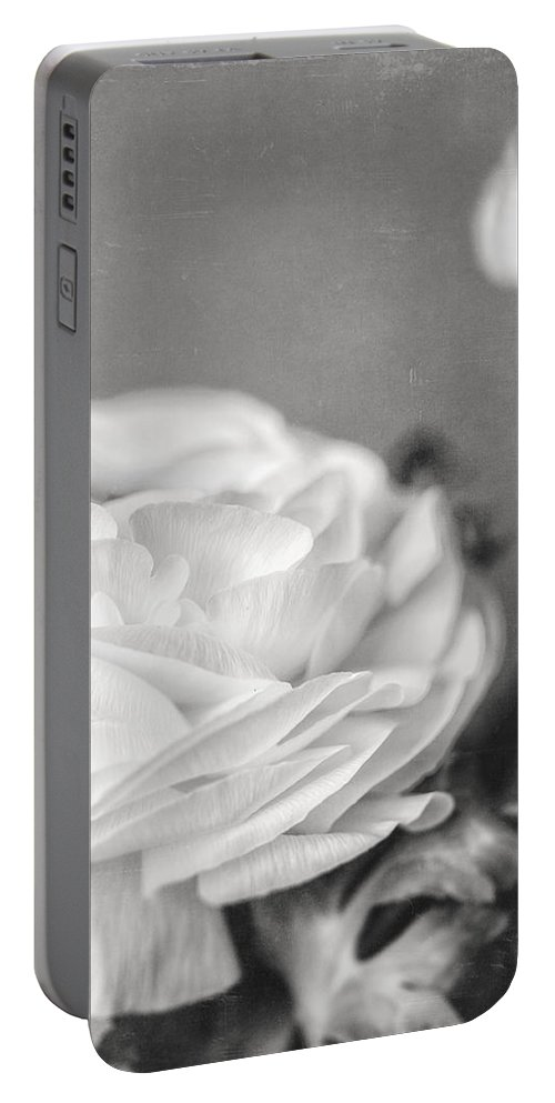 Ranunculus Portable Battery Charger featuring the photograph Elegant Ranunculus Flower In Black And White by Lisa Russo