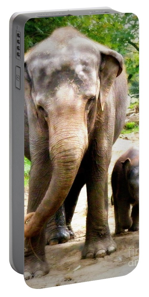 Elephant Portable Battery Charger featuring the photograph Elephant Baby Olli With Mommy by Lainie Wrightson