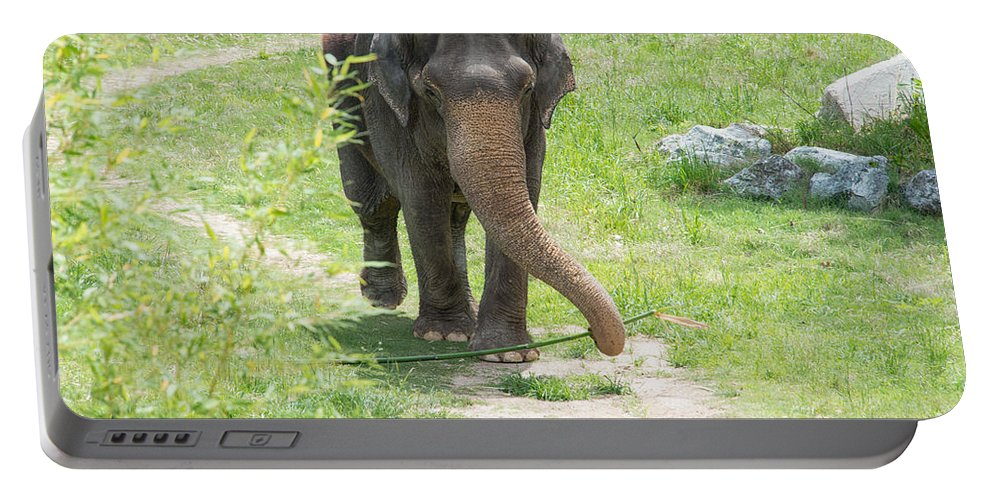 Animals Portable Battery Charger featuring the digital art Elephant by Carol Ailles