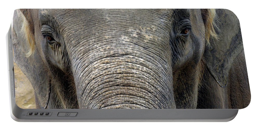 Elephant Portable Battery Charger featuring the photograph Elephant Close Up 1 by Tom Conway