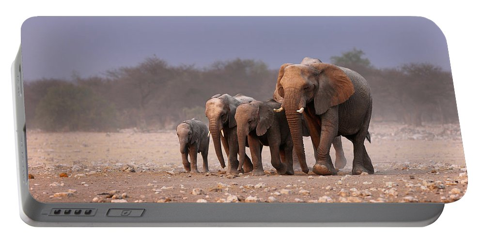 Wild Portable Battery Charger featuring the photograph Elephant herd by Johan Swanepoel