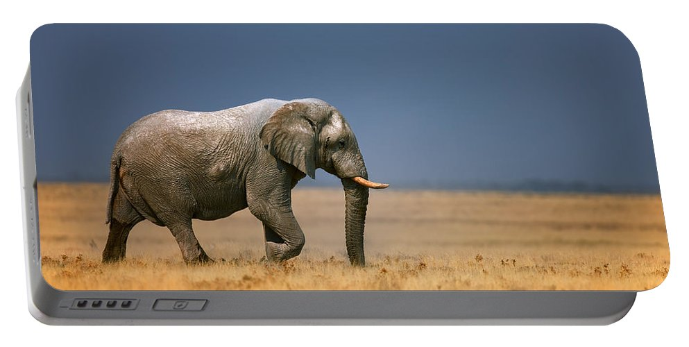 Walk Portable Battery Charger featuring the photograph Elephant In Grassfield by Johan Swanepoel