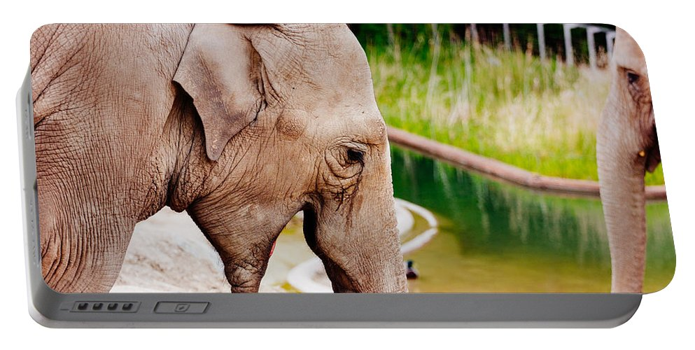 Photography Portable Battery Charger featuring the photograph Elephant Open Mouth by Pati Photography