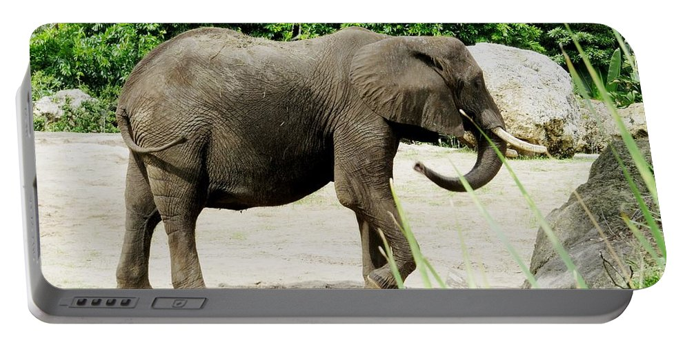 Elephant Portable Battery Charger featuring the photograph Elephant by Zina Stromberg