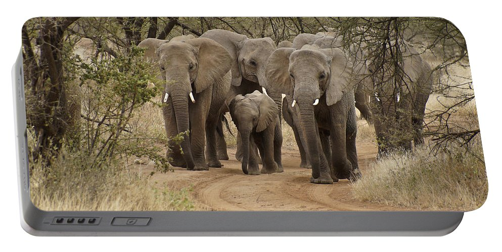 Africa Portable Battery Charger featuring the photograph Elephants Have the Right of Way by Michele Burgess