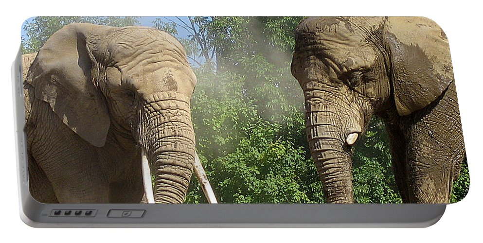 Elephants Portable Battery Charger featuring the photograph Elephants In The Sand by Nina Silver