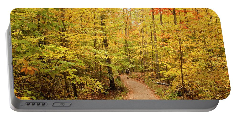 Algonquin Park Portable Battery Charger featuring the photograph Empty Trail Runs Through Tall Trees by Paul Giamou