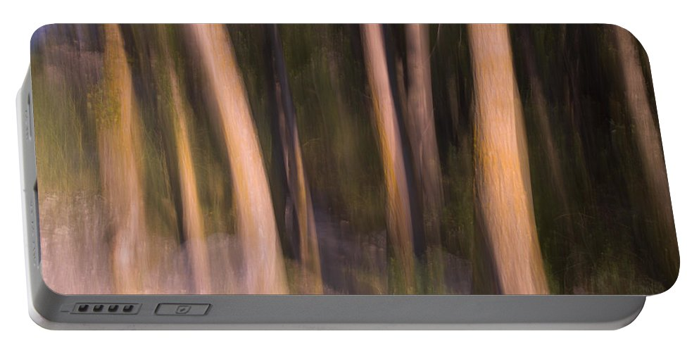 Abstracts Portable Battery Charger featuring the photograph Enchanted Forest by Guido Montanes Castillo