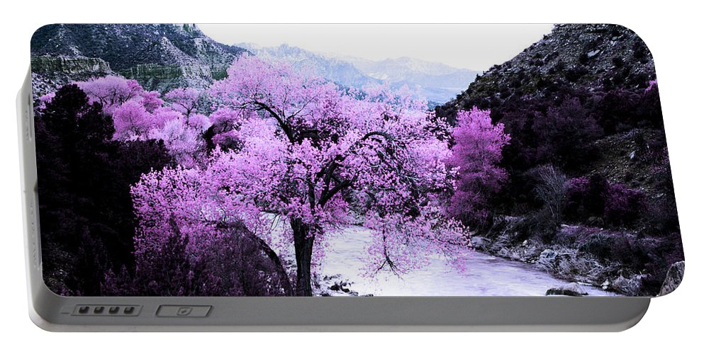 Evie Portable Battery Charger featuring the photograph Enchanted Pink by Evie Carrier