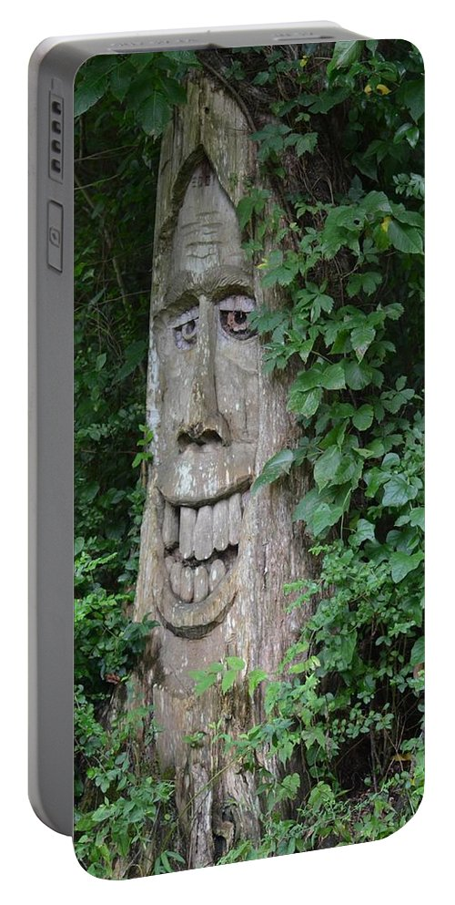 Enchanted Tree In The Forest Portable Battery Charger featuring the photograph Enchanted Tree In The Forest by Maria Urso