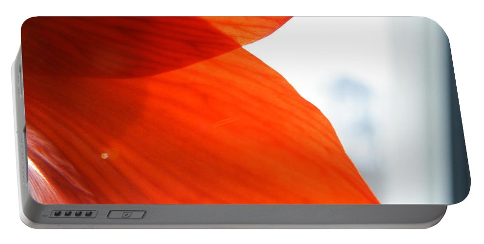 Enfolding Portable Battery Charger featuring the photograph Enfolding In Orange by Brian Boyle