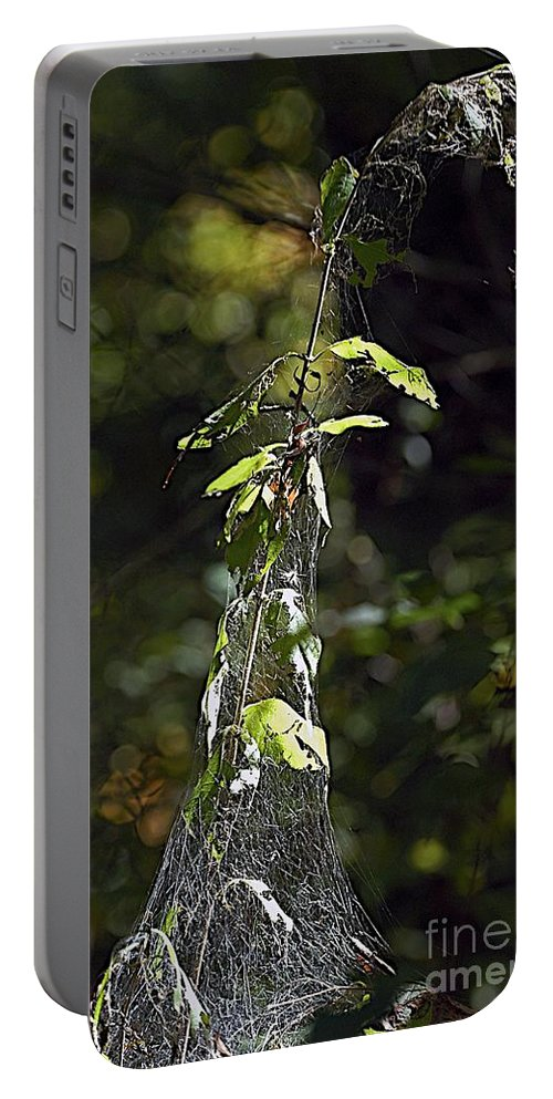 Web Portable Battery Charger featuring the photograph Entangle by Joseph Yarbrough