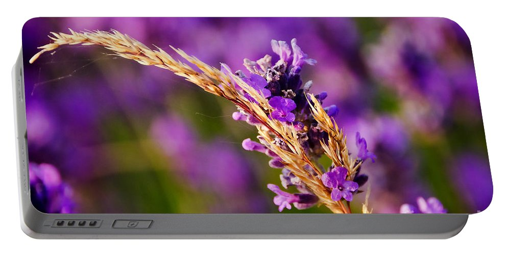 Lavender Portable Battery Charger featuring the photograph Entangled by Susie Peek