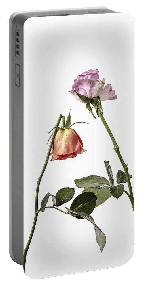 Rose Portable Battery Charger featuring the photograph Ephemeral by Joana Kruse