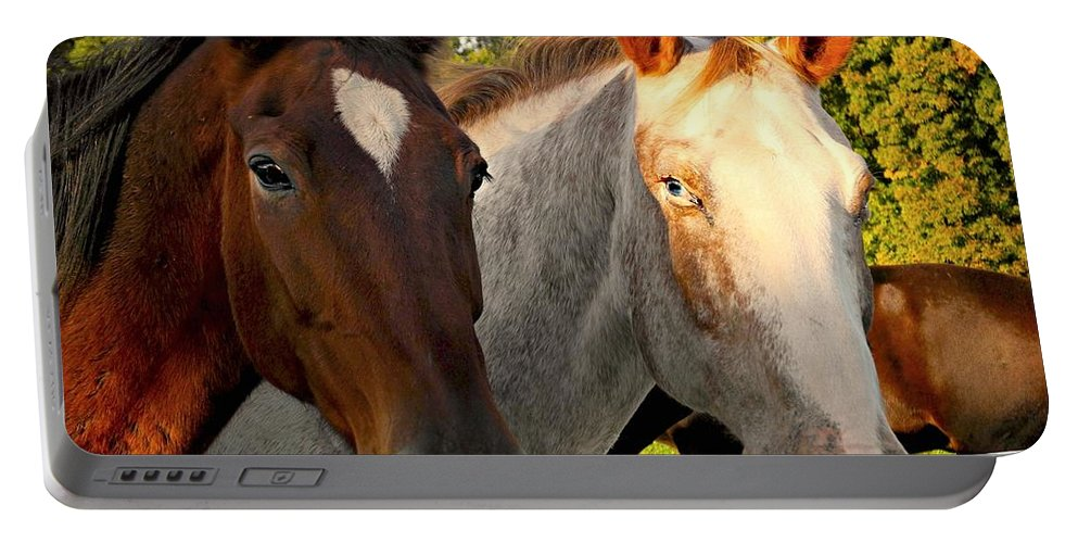 Horses Portable Battery Charger featuring the photograph Equestrian Beauties by Beth Ferris Sale