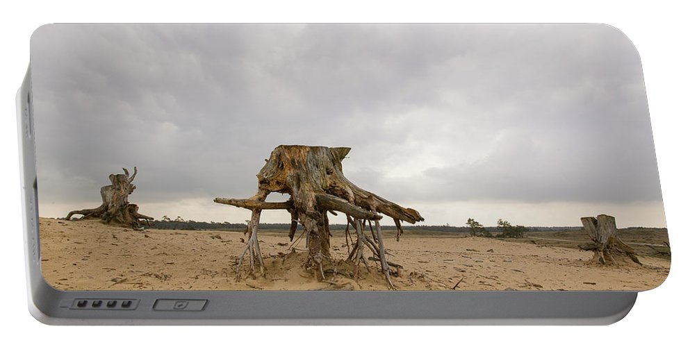 Hoge De Veluwe National Park Portable Battery Charger featuring the photograph Eroded Tree Stumps Stand On Their Roots by Robert van Waarden
