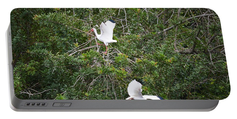 Florida Portable Battery Charger featuring the photograph Escaping Bird by Linda Kerkau