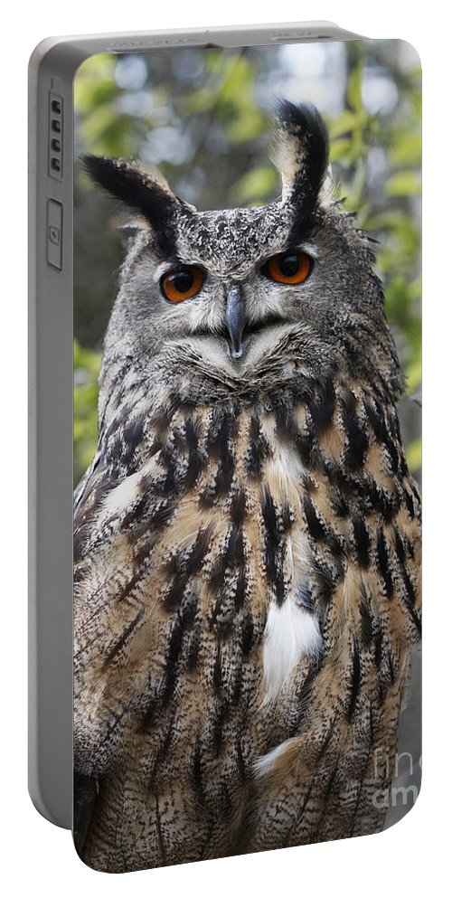 Owl Portable Battery Charger featuring the photograph Eurasian Eagle Owl by Barbara McMahon