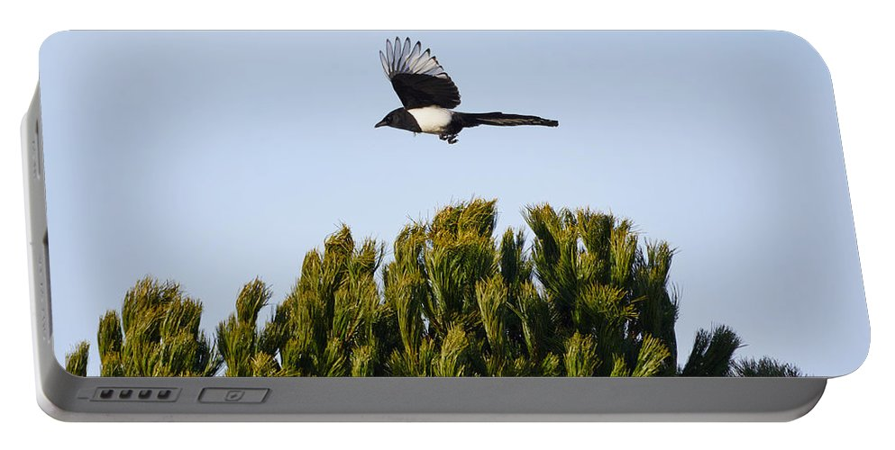 Finland Portable Battery Charger featuring the photograph Eurasian Magpie by Jouko Lehto