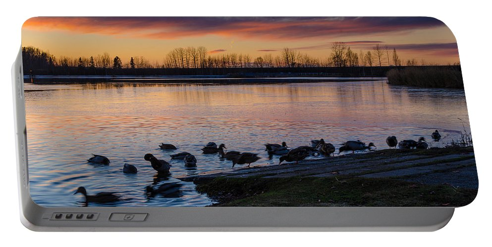 Sunset Portable Battery Charger featuring the photograph Evening Swim by Nikolai Martusheff