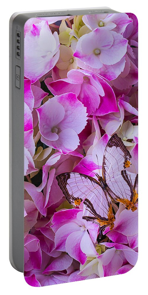 Exotic Portable Battery Charger featuring the photograph Exotic Butterfly On Hydrangea by Garry Gay