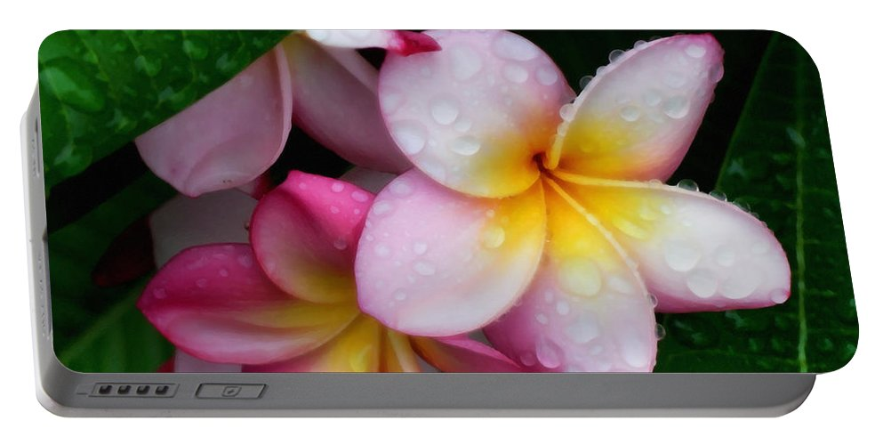 Plumeria Portable Battery Charger featuring the photograph Exotic Tears by Georgiana Romanovna