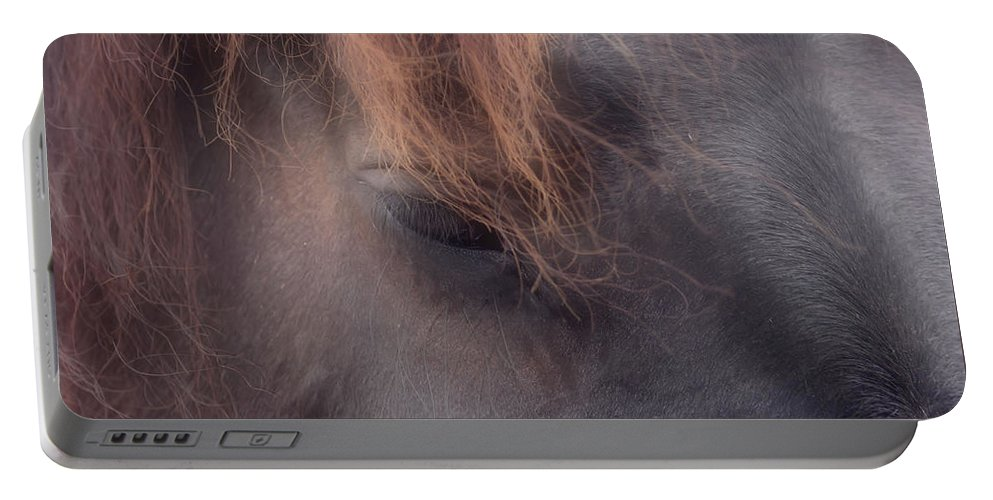 Horse Portable Battery Charger featuring the photograph Eyes Of The Soul by Smilin Eyes Treasures