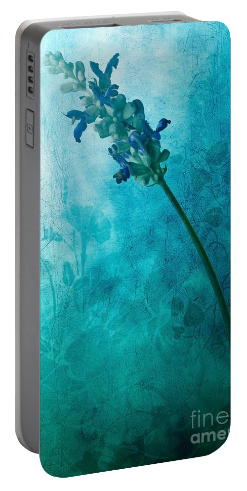 Flower Painting Portable Battery Charger featuring the digital art Fae by John Edwards