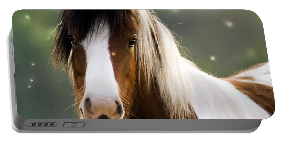 Fairy Portable Battery Charger featuring the photograph Fairytale Pony by Angel Ciesniarska