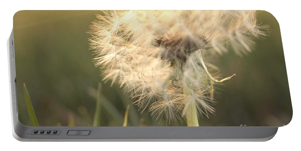 Dandelion Portable Battery Charger featuring the photograph Faith by Kerri Mortenson