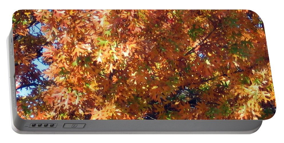 Tree Portable Battery Charger featuring the photograph Fall by Amy Hosp