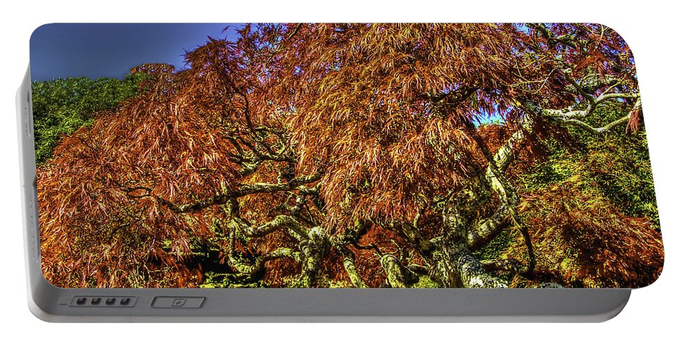 Fall Portable Battery Charger featuring the photograph Fall Color At Biltmore by Dale Powell