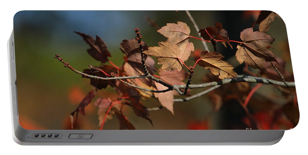 Autumn Portable Battery Charger featuring the photograph Fall Colors by Karol Livote