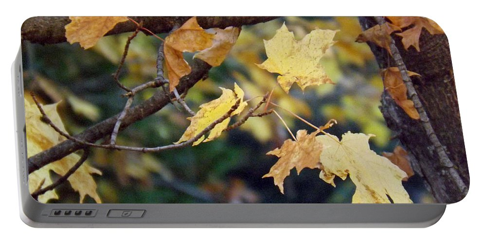 Fall Portable Battery Charger featuring the photograph Fall Foilage by Brenda Brown