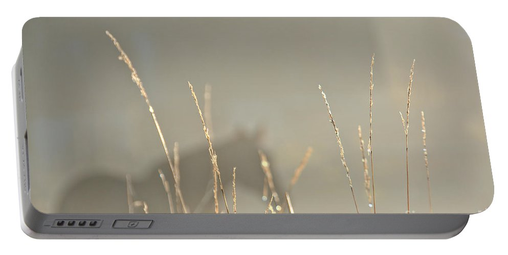Portable Battery Charger featuring the photograph Fall Grasses by Cheryl Baxter