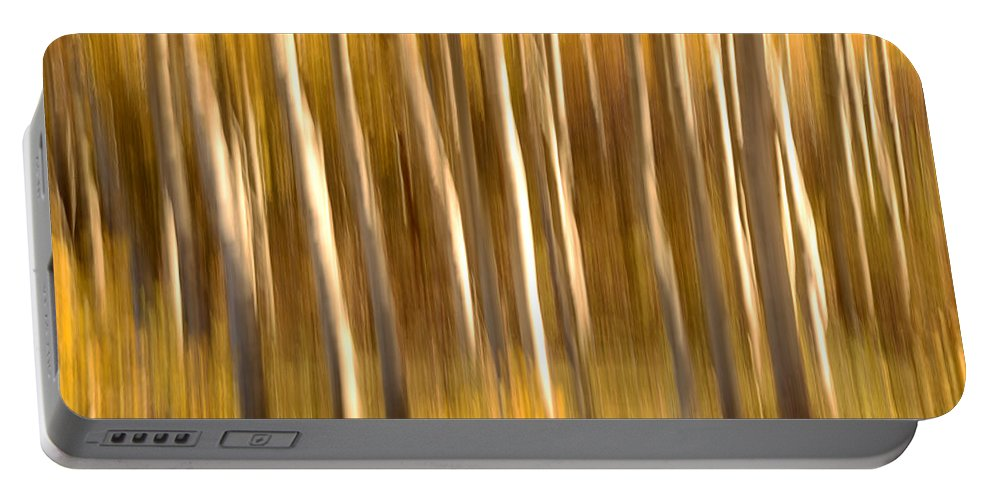 Aspen Portable Battery Charger featuring the photograph Fall In The Wasatch by Dustin LeFevre